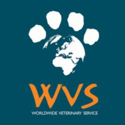 WVS logo