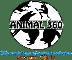 Animal360 logo